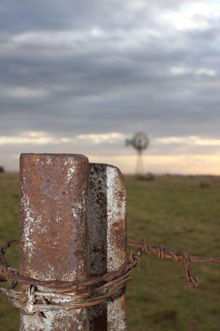 Windpomp naby Potchefstroom, Suid-Afrika, foto - Corlia