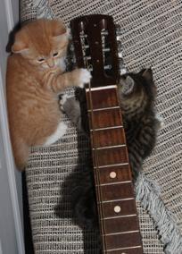 Kyllä minulle käy nämä kaksi kieltäkin kitaran soittoon :)