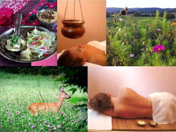 La cure Bhavana : Un séjour au meilleur de soi. Cure ayurvédique de 5 jours / 6 nuits dans le Morvan, en Bourgogne.
