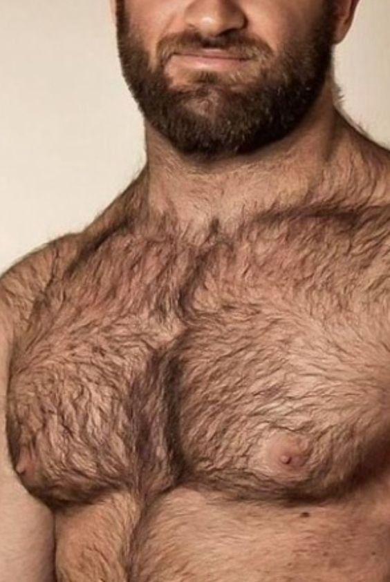 Волосатая грудь парня видео просмотр, целомудрие линн фото