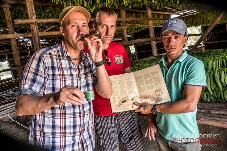 2016 Mexiko & Kuba Rundreise: Viñales