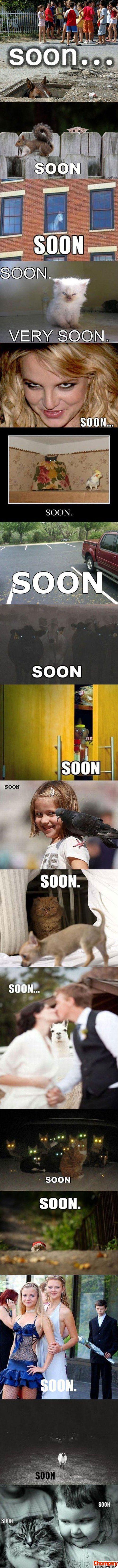 Soon lol