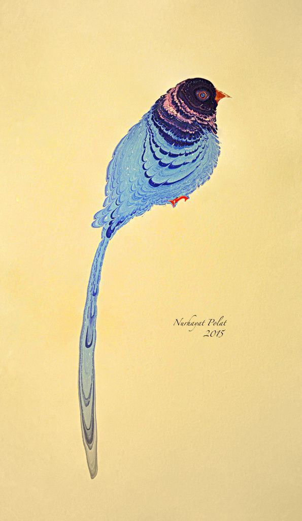 . Ebru - bird aa