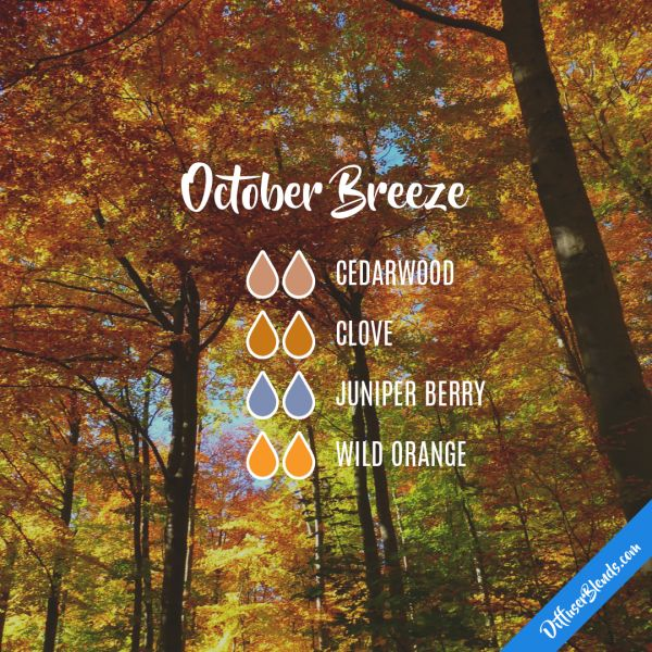 Need these oils? Visit my site to order or become a Young Living member - www.tinyurl.com/spoiledwoils  New members will get this blend free!