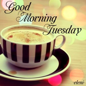 20 Best Happy Tuesday Morning Messages