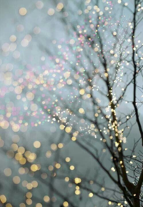 Winter night with sparkling lights