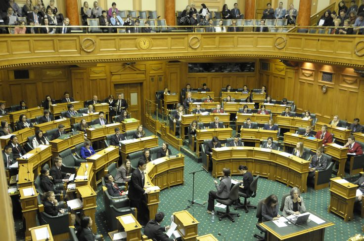 NZ Youth Parliament