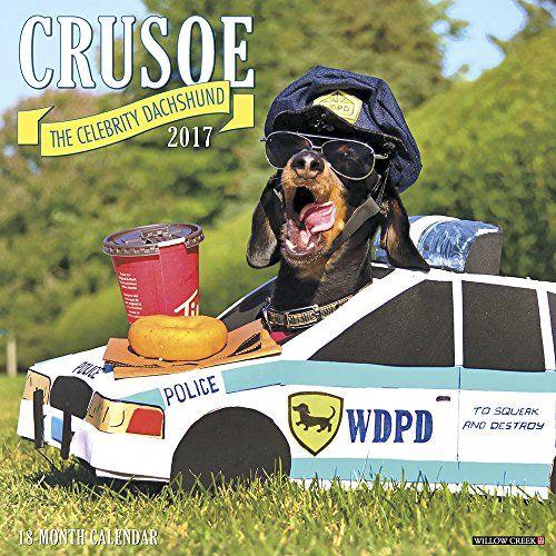 Crusoe the Celebrity Dachshund (@crusoe_dachshund ...