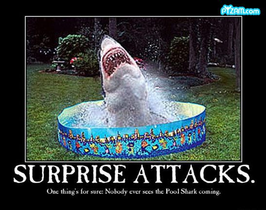 Surprise Attacks funny picture: Funny Stuff, Pools, Sharks, Shark Week