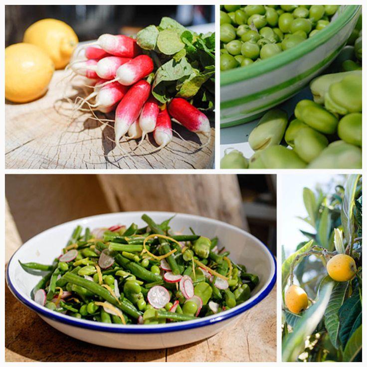 fresh spring green salad