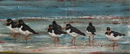 Oystercatchers by Steven Ferguson at Wallpiece.co.uk