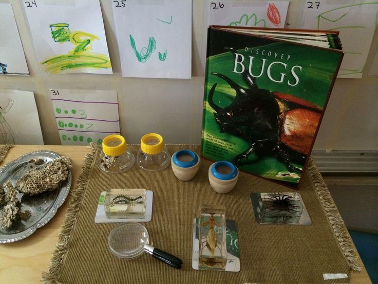 Bug Study Invitation (via Fairy Dust Teaching)