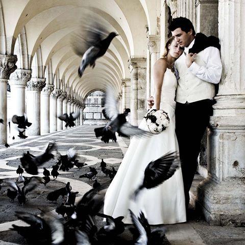 Schon etwas älter - eine meiner ersten Hochzeitsfotos in dem wunderschönen Venedig. 1 Jahr nach ihrer Hochzeit fand das after wedding shooting von Silke und Andreas statt. Grüßt mir nächstes Wochenende Venedig. :-)\n#wedding#venice#michaelstange#fotograf#osnabrück#after wedding