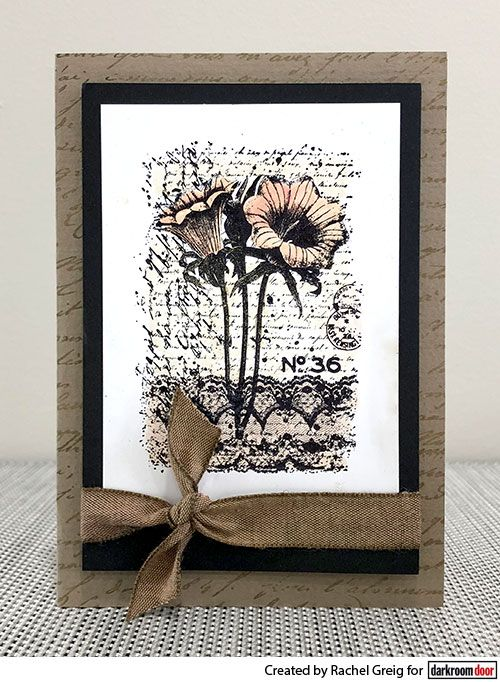 Colouring with Distress Markers. Card by Rachel Greig using Darkroom Door Botanical Script Stamps