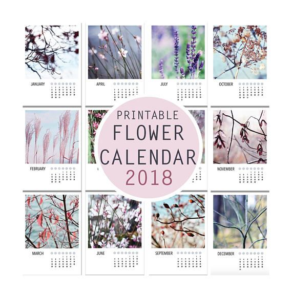 Check out this item in my Etsy shop https://www.etsy.com/listing/574142201/flower-photo-calendar-2018-a4-instant