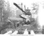 Kinsey Brothers Photographs of the Lumber Industry, 1890-1945