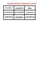 ELBLOGDESAMI.ORG-VOCABULARIO-REPTILES-002