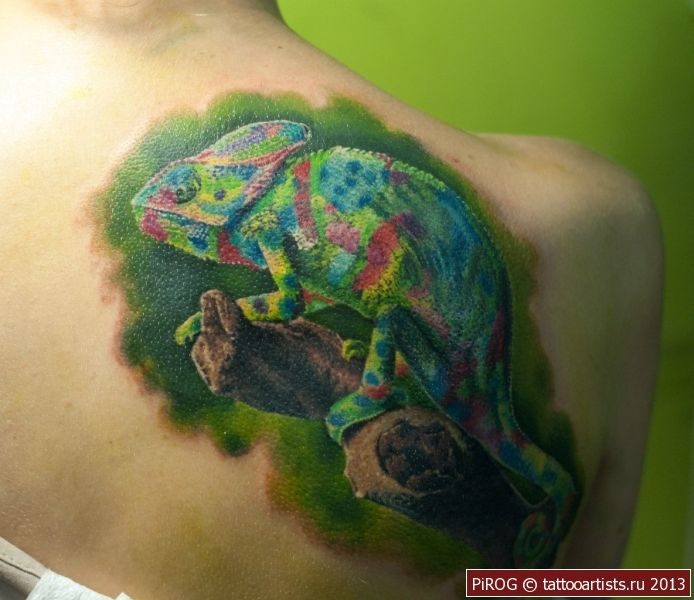 Chameleon Tattoo Finder: 17+ Best Ideas About Chameleon Tattoo On Pinterest
