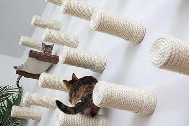 Baue den perfekten Spielplatz für deine Katzen!
