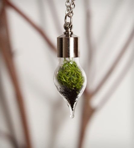 a living necklace, with reindeer moss inside, cool idea!