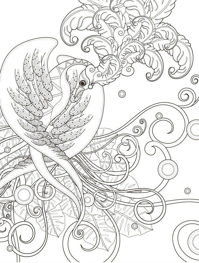 Free Bird Printable Adult Coloring Page