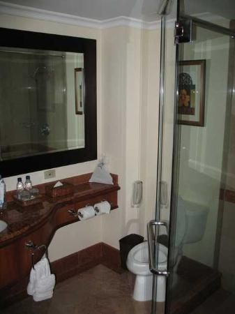 JW Marriott Hotel Caracas.  Our bathroom was like this.  Shower leaked, as I recall.  Made a mess on the floor.
