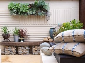 bench and wall succulents