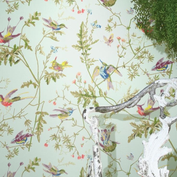 Humming Birds Wallpaper Hummingbird wallpaper, Cole and