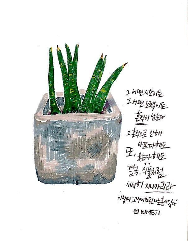 일러스트 캘리그라피 식물