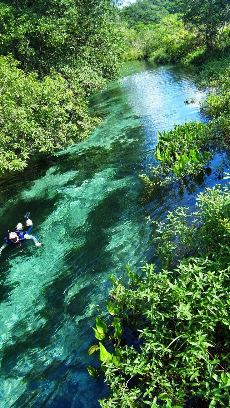 My Ultimate Travel Destination: Brazil #travelcompanion Rio Sucuri Bonito Brazil