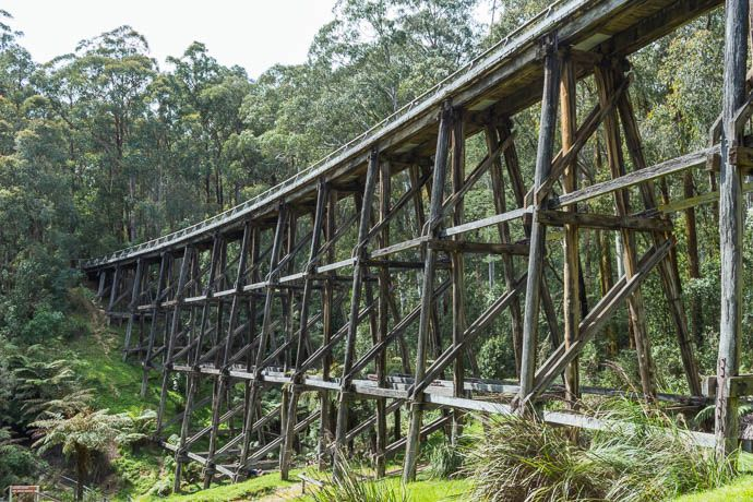 Landscape photo of Noojee Trestle bridge from steep embankment