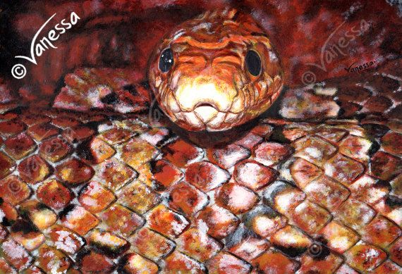 "TRUST IN ME A4 Lithograph Print of Corn Snake Realism Painting by VLGStudios A4 lithographic print on card of my original painting entitled ""TRUST IN ME"".   Completed in January of 2012, using acrylic paints, it depicts a cosy coiled corn snake looking straight at the viewer. The painting is based upon an open source image.   These are high-quality professional lithographic prints of high resolution scans, scanned and printed by a professional commercial company on thick card."
