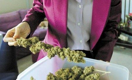 Marijuana - Ultima speranta impotriva cancerului?