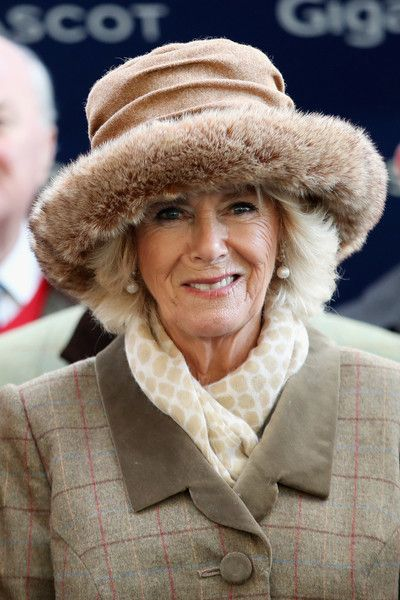 Camilla Parker Bowles Photos - Camilla, Duchess of Cornwall presents the award for The Waitrose Handicap Steeple Chase to The George Inn Racing Syndicate as she attends the Prince's Countryside Fund Raceday at Ascot Racecourse on November 24, 2017 in Ascot, England. - The Prince Of Wales And Duchess Of Cornwall Attend The Prince's Countryside Fund Raceday