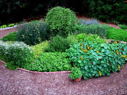 45 best gardening herb gardens images on Pinterest Herbs garden