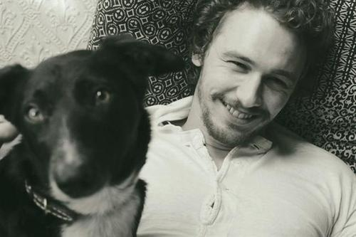 , Celebrities Pets, James Franco, Beards Beautiful, Gus Vans, Beards