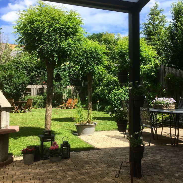 Gardenview backyard / tuinzicht, achtertuin
