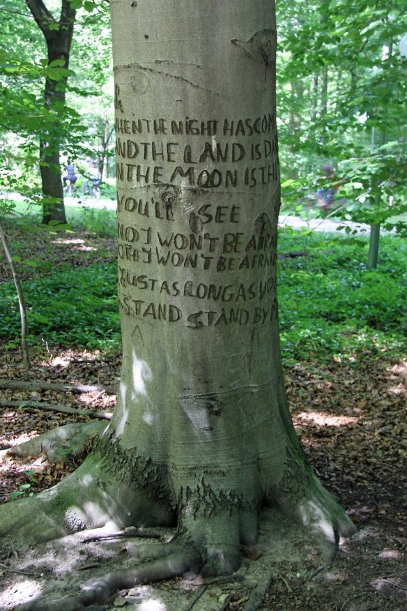 Lyrics of the song Stand by me carved into a tree in Tiergarten, photo by