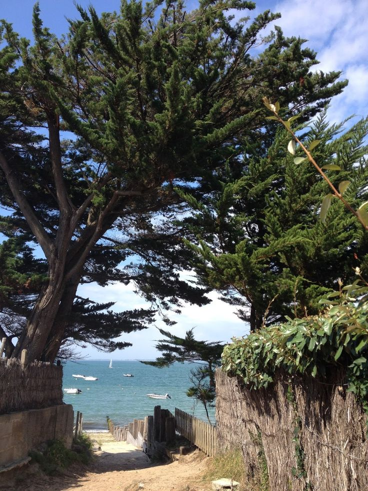 From Soph to you: Esprit bord de mer, inspiration