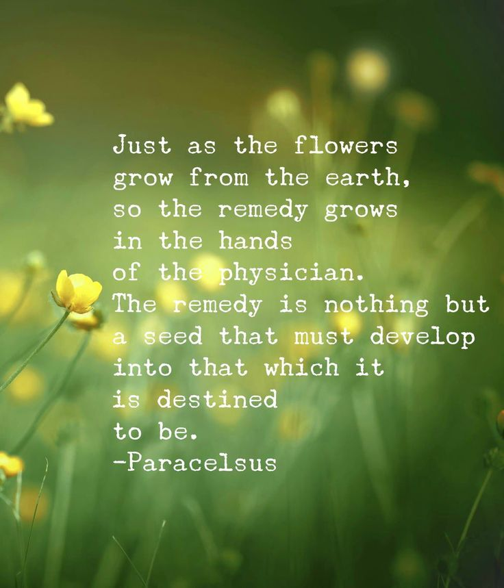 Back To Nature Quotes: 7 Best Local Herbs Images On Pinterest