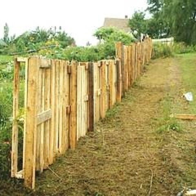 47 best back yard privacy fence ideas images on pinterest for Wood pallet privacy walls