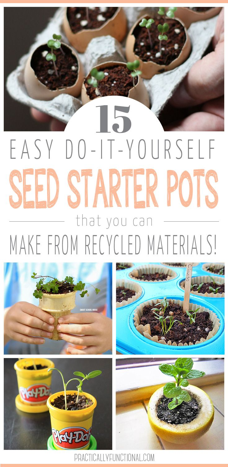 15 DIY Seed Starter Pots Made From Recycled Materials!   Home ...