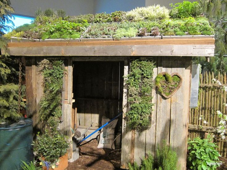 Nice old plants on green roof shed, ideas for green wall panels too. Pittoresque!
