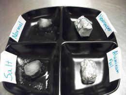 Experiment to see what conditions make ice melt faster and which conditions lengthen the melt time.