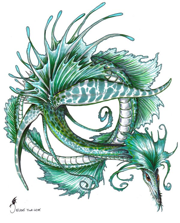 Leafy sea dragon by jaxxblackfox on deviantart sea for Sea dragon tattoo