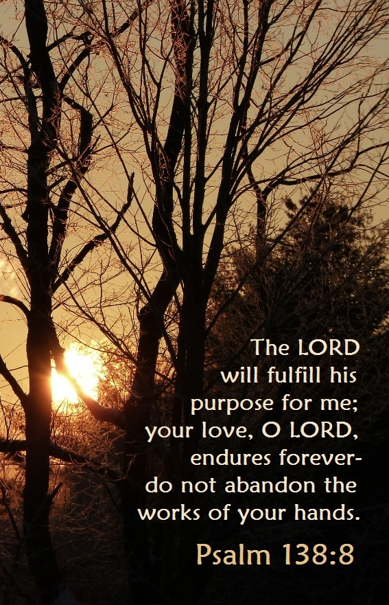 PSALM 138:8 The LORD WILL fulfill HIS purpose for me. Your love, O LORD endures forever. //#Amen