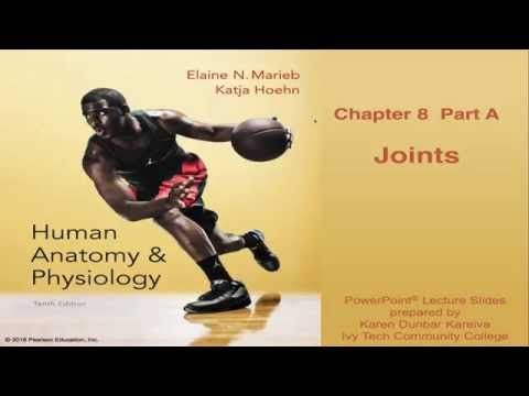 55 best BIO.1141 Anatomy and Physiology images on Pinterest ...