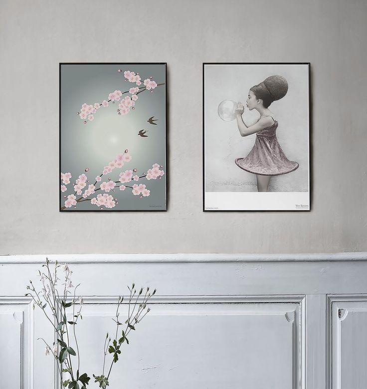 SAKURA plakat med kirsebærblomster. Kig op i den friske forårshimmel og se kirsebærtræerne. Sakura betyder kirsebærblomst på japansk. Køb plakaten her!