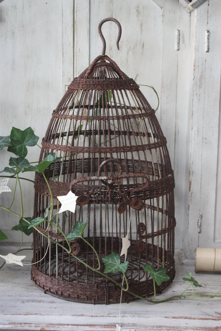 Cage oiseau ancienne fashion designs - Cage oiseau decorative interieur ...