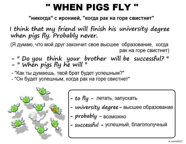 When Pigs Fly Idiom Examples Images Example Cover Letter For Resume